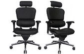 Ergohuman Mesh Office Chairs
