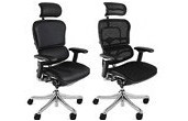 Ergohuman Plus Mesh Office Chairs