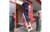 Lyte Step Ladders