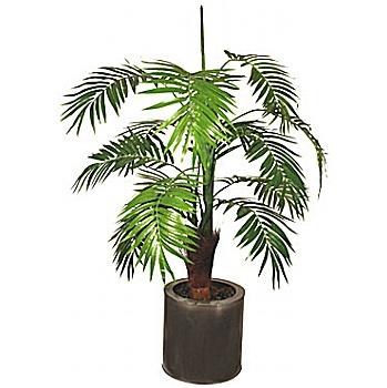 3ft Mini Palm