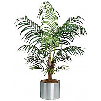 4ft Deluxe Areca Palm
