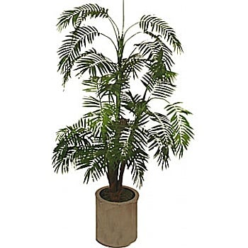 5ft Mini Palm