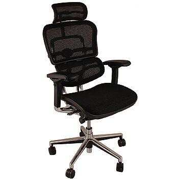 Ergohuman Mesh Office Chairs (With Headrest)