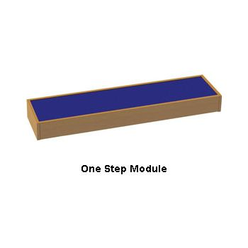 Arena Stage Step Module