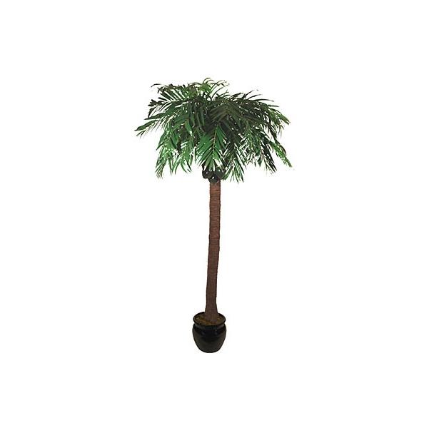 9ft Coconut Palm Tree