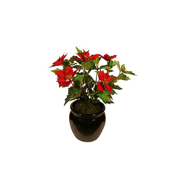 60cm Poinsetta Plant - Red