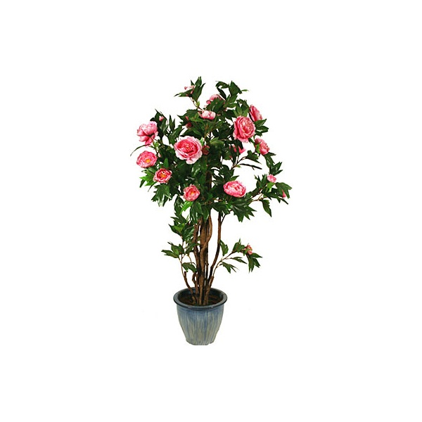 4.5ft Peony Tree with Natural Stem