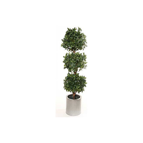 5ft Triple Bay Ball Topiary with Natural Stem