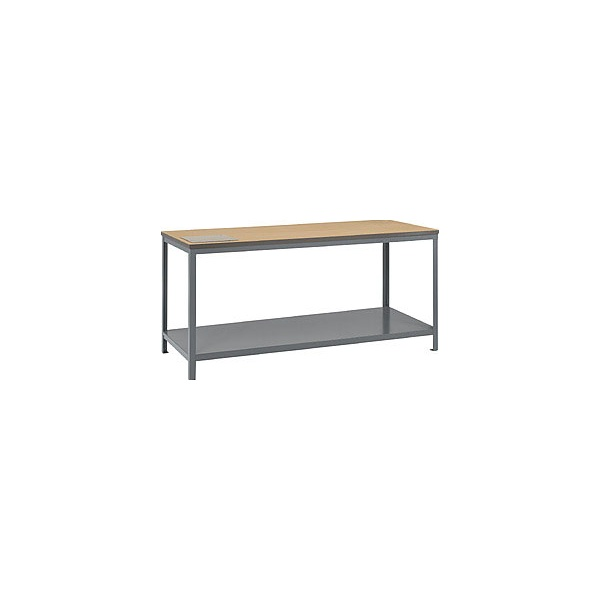 Standard Heavy Duty Workbenches With Shelf (500 KG)