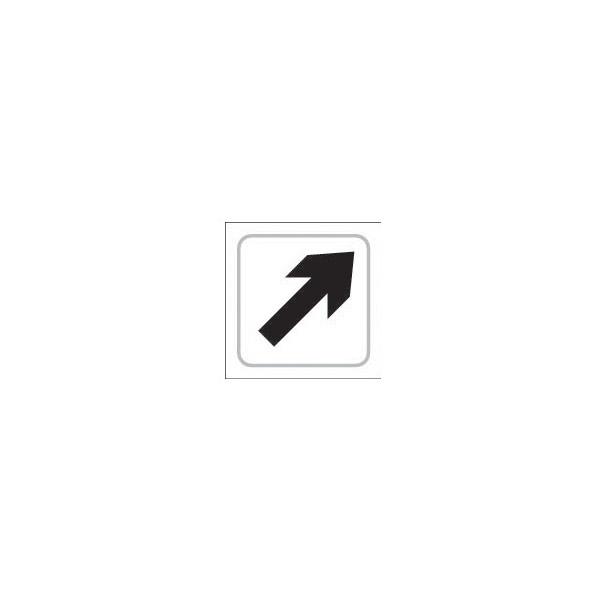 Braille Diagonal Arrow