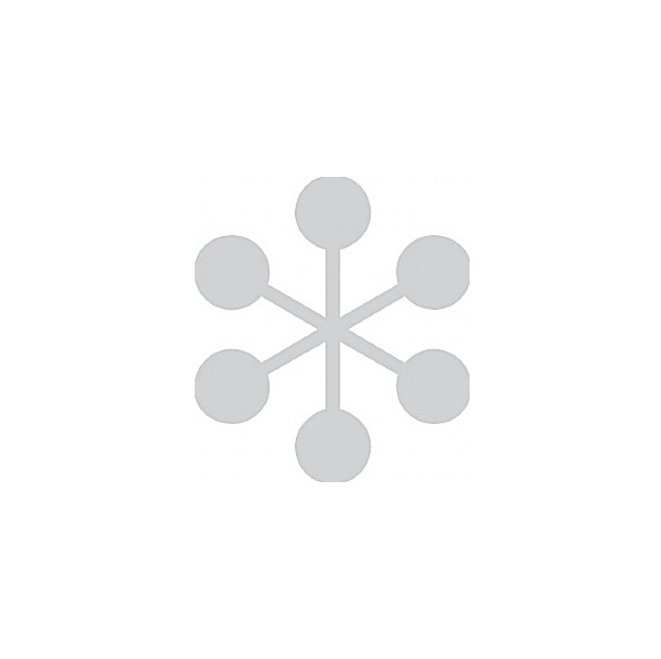 Frost Symbol x5