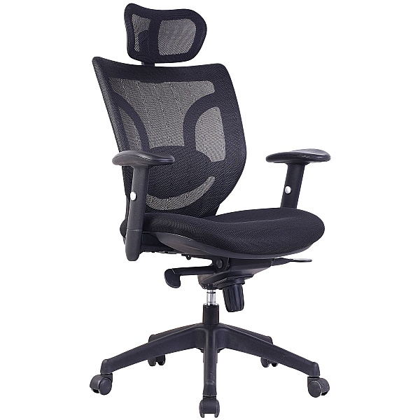 Aral Mesh Back Manager Chair
