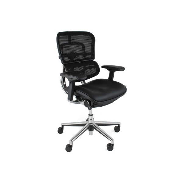 Ergohuman Mesh & Leather Office Chairs (Without Headrest)