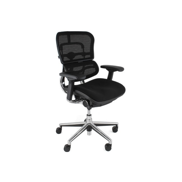 Ergohuman Mesh & Fabric Office Chairs (Without Headrest)