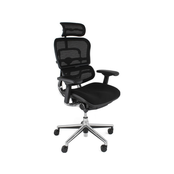 Ergohuman Mesh & Fabric Office Chairs (With Headrest)
