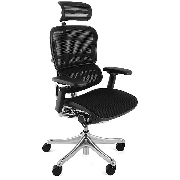 Ergohuman Plus Mesh Office Chairs (With Headrest)