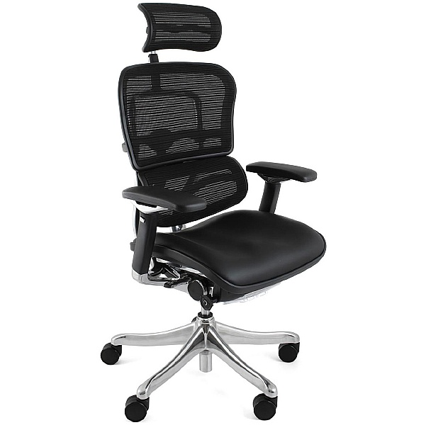 Ergohuman Plus Mesh & Leather Chair (With Headrest)