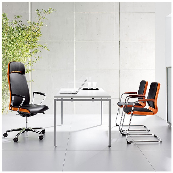 BN Belive Leather Cantilever Conference Chair