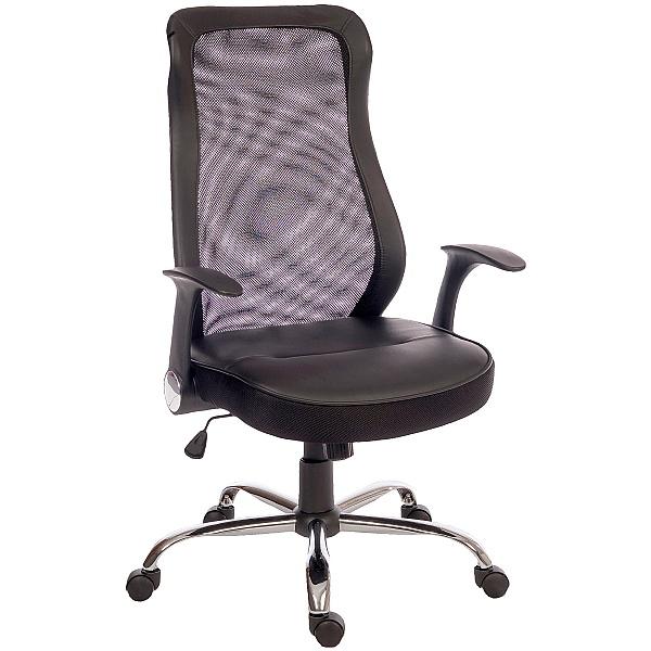 Harrow Mesh Back Executive Chair